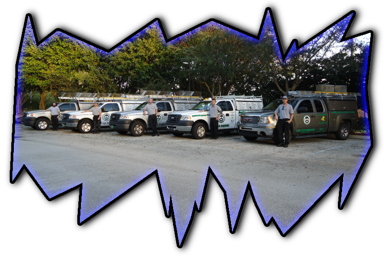 Miami Beach, FL Nuisance Wildlife Management Team