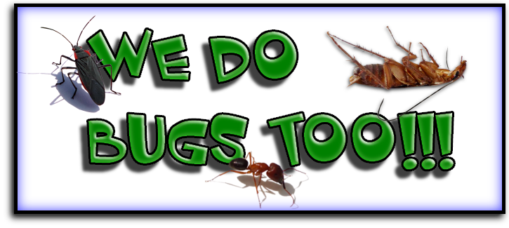 Port St. Lucie, FL Pest Exterminators