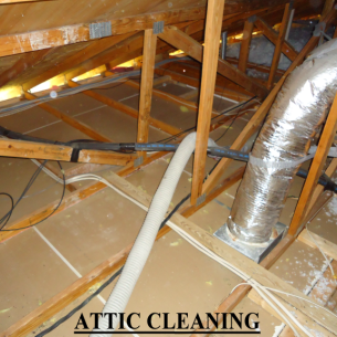 Palm Beach County, FL Attic Insulation Removal Services