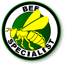 Fort Pierce, FL Bee Removal