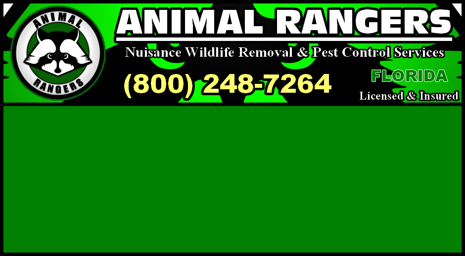 Florida Nuisance Wildlife Control and Animal Removal Services