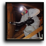 Pembroke Pines, FL Attic Cleaning Service